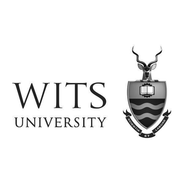 wits university logo